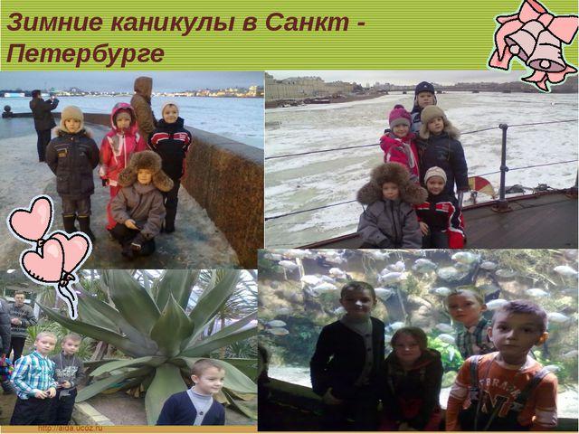 Зимние каникулы в Санкт - Петербурге
