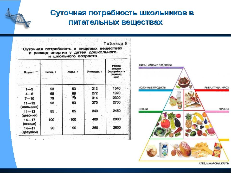 Суточная потребность школьников в питательных веществах