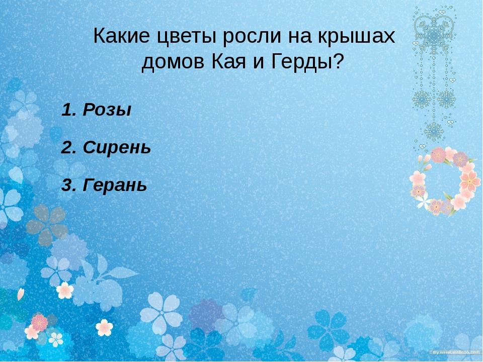 Какие цветы росли на крышах домов Кая и Герды? 1. Розы 2. Сирень 3. Герань