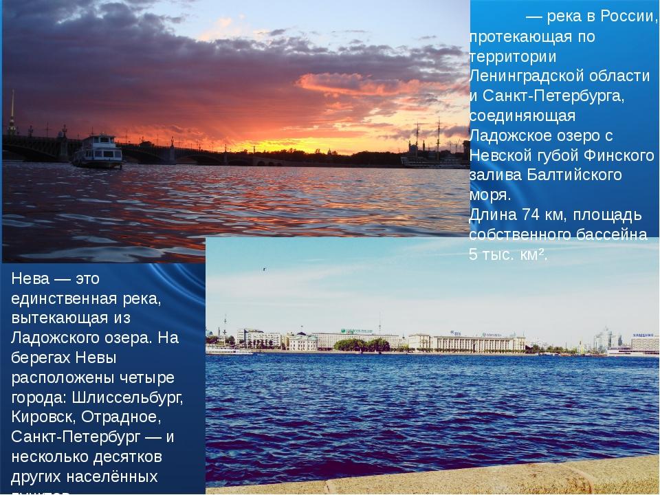 Нева́ — река в России, протекающая по территории Ленинградской области и Санк...