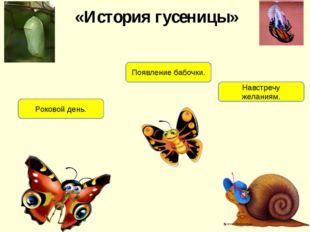 «История гусеницы» Роковой день. Появление бабочки. Навстречу желаниям.