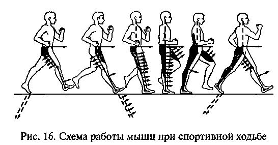 E:\картинки для методички\техника дв.д.png