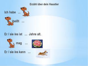 Erzähl über dein Haustier Ich habe … heißt …  Er / sie /es ist … Jahre alt.