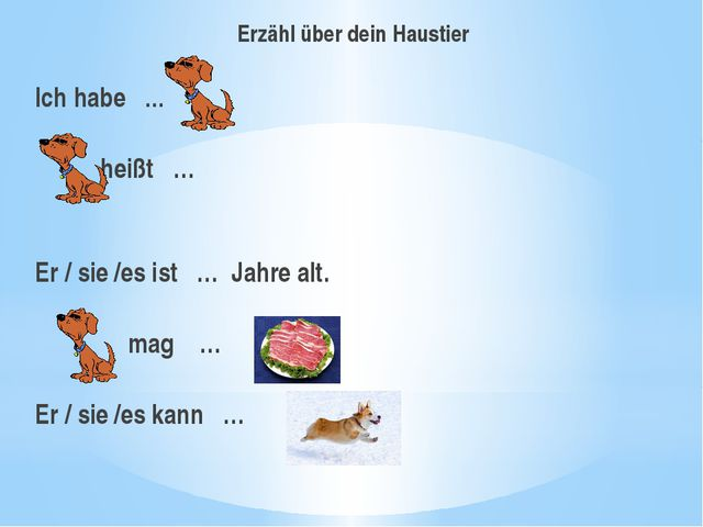Erzähl über dein Haustier Ich habe … heißt …  Er / sie /es ist … Jahre alt....