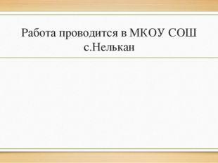 Работа проводится в МКОУ СОШ с.Нелькан
