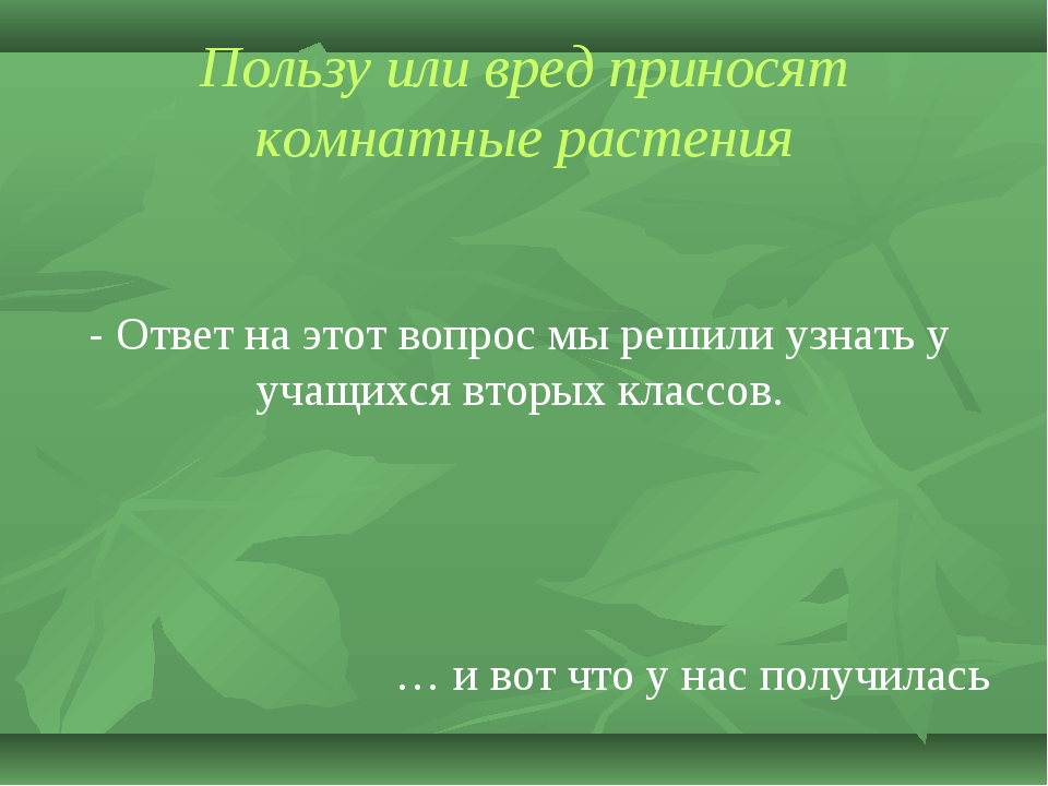 Пользу или вред приносят комнатные растения - Ответ на этот вопрос мы решили...