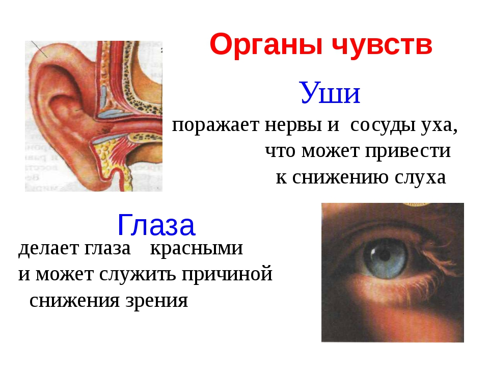 Уши поражает нервы и сосуды уха, что может привести к снижению слуха делает...