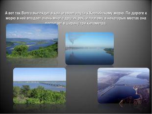 А вот так Волга выглядит в конце своего пути к Каспийскому морю. По дороге к