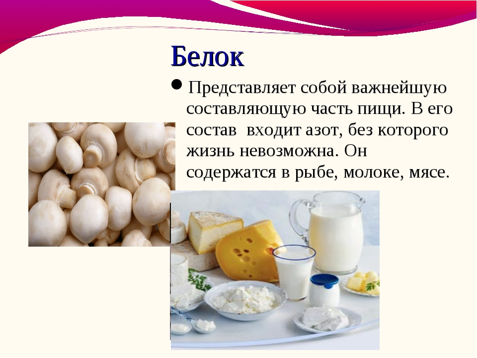 Белок Представляет собой важнейшую составляющую часть пищи. В его состав вхо...