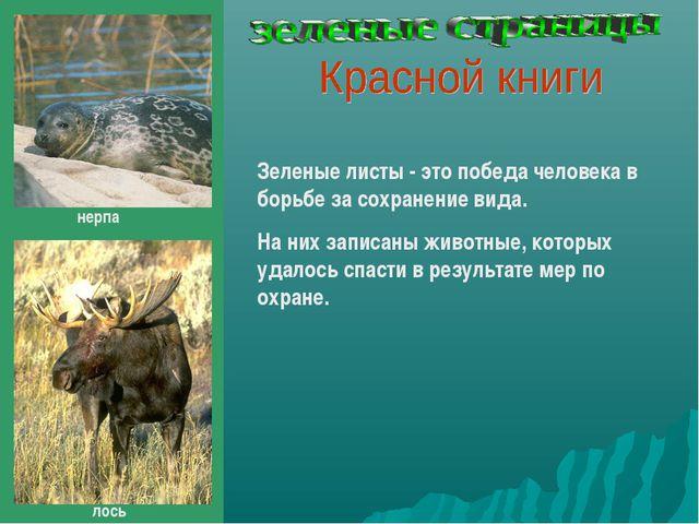 Зеленые листы - это победа человека в борьбе за сохранение вида. На них запис...