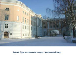 Здание Царскосельского лицея, современный вид.