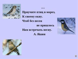 … Приучите птиц в мороз, К своему окну. Чтоб без песен не пришлось Нам встреч