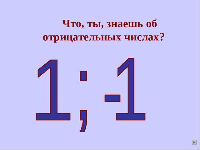 Что, ты, знаешь об отрицательных числах?