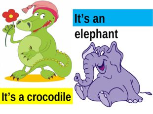 It's a crocodile It's an elephant
