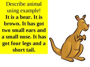 Describe animal using example! It is a bear. It is brown. It has got two smal