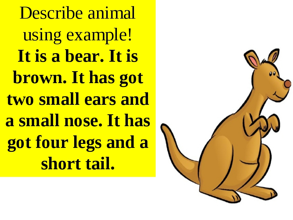 Describe animal using example! It is a bear. It is brown. It has got two smal...