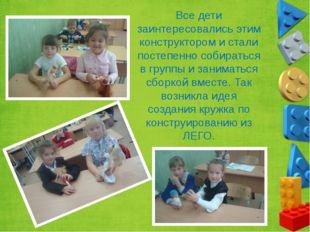 Все дети заинтересовались этим конструктором и стали постепенно собираться в