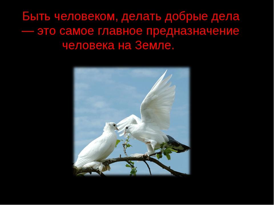 Быть человеком, делать добрые дела — это самое главное предназначение человек...