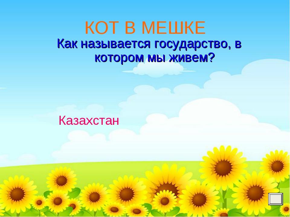 КОТ В МЕШКЕ Как называется государство, в котором мы живем? Казахстан