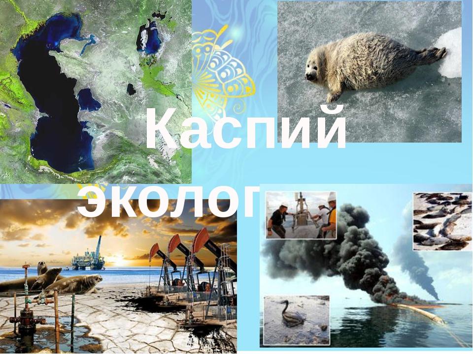 Каспий экологиясы