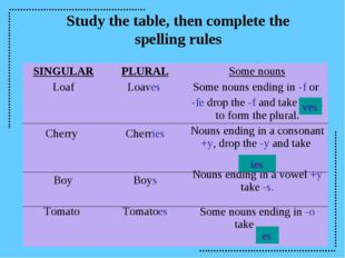 Study the table, then complete the spelling rules ves ies es SINGULAR Loaf Ch