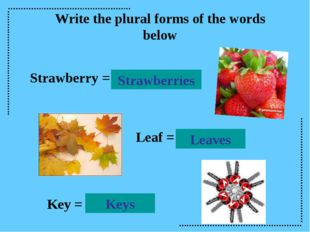 Write the plural forms of the words below Strawberry = Strawberries Leaves Le