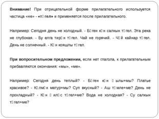 К специфическим свойствам татарского языка, и в частности, татарского прилага
