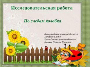 Автор работы: ученица 5А класса Какурина Камиля Руководитель: учитель биологи