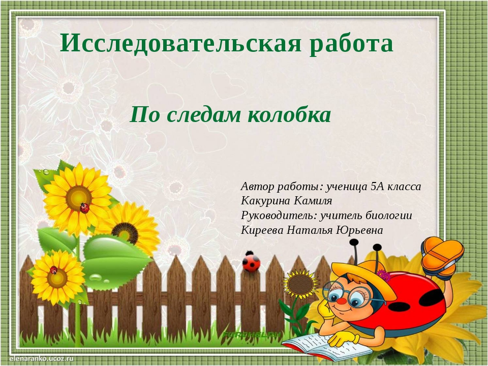 Автор работы: ученица 5А класса Какурина Камиля Руководитель: учитель биологи...