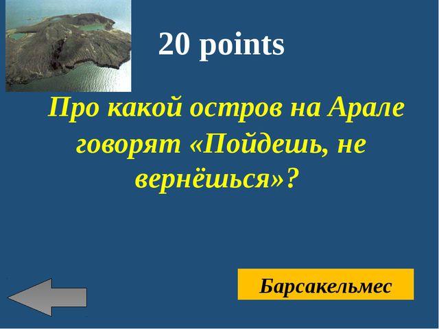 20 points Про какой остров на Арале говорят «Пойдешь, не вернёшься»? Барсакел...