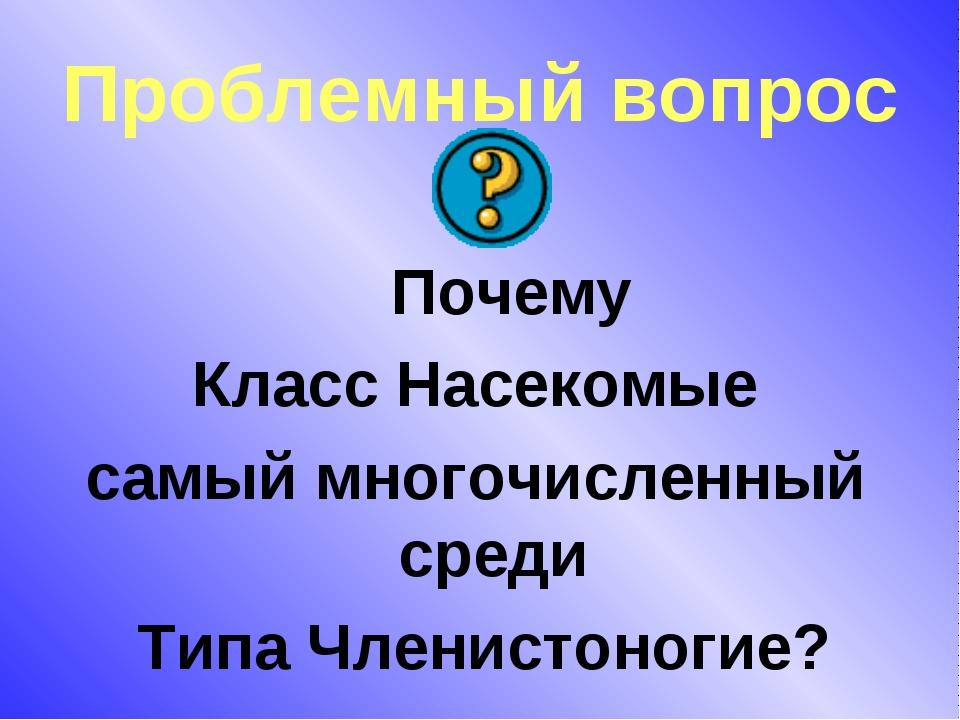 Проблемный вопрос Почему Класс Насекомые самый многочисленный среди Типа Член...