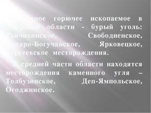 Основное горючее ископаемое в Амурской области - бурый уголь: Райчихинское,