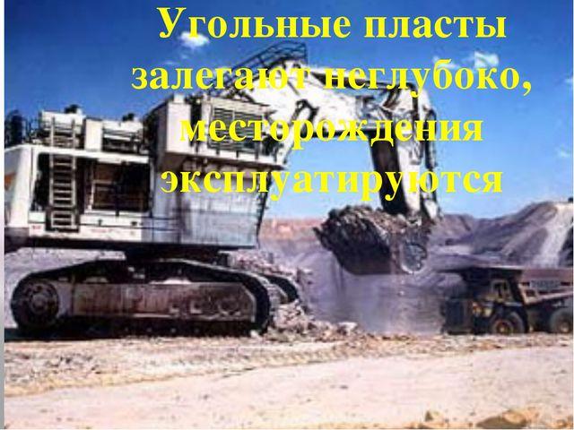 Угольные пласты залегают неглубоко, месторождения эксплуатируются