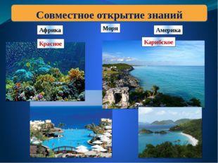 Африка Америка Красное Моря Совместное открытие знаний Карибское