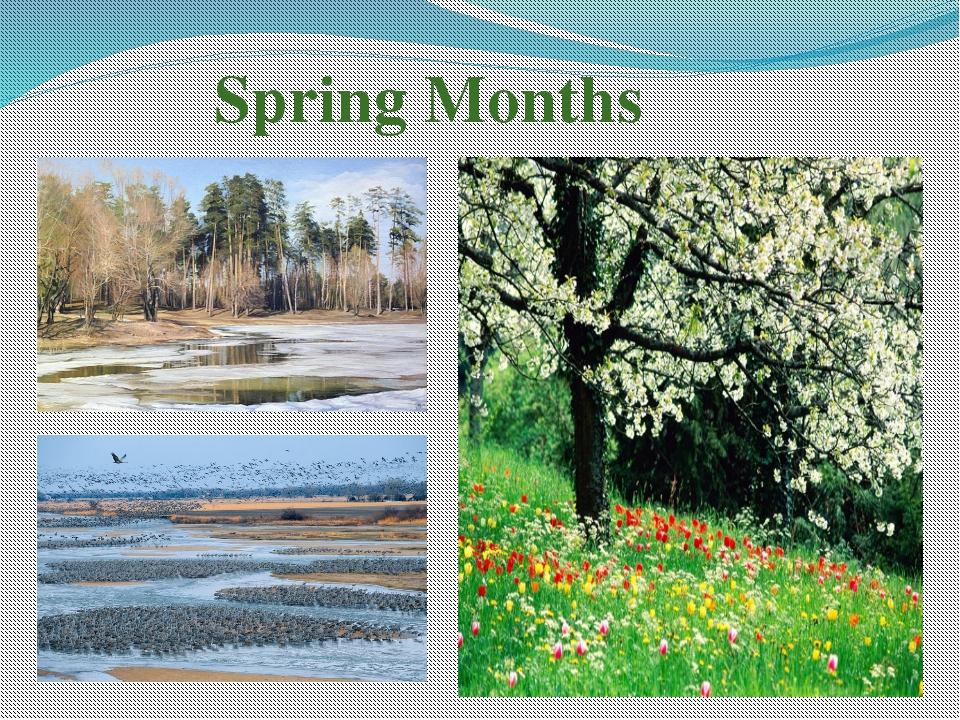 Spring Months