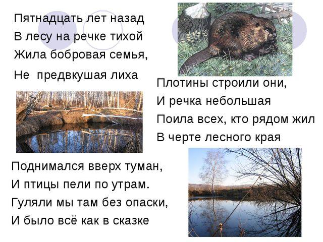 Пятнадцать лет назад В лесу на речке тихой Жила бобровая семья, Не предвкушая...