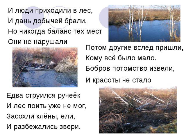 И люди приходили в лес, И дань добычей брали, Но никогда баланс тех мест Они...