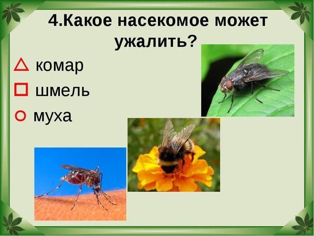 сообщение о пчелах осах и шмелях 2 класс окружающий мир