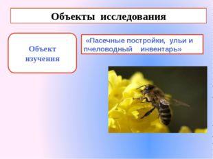 Объекты исследования Объект изучения «Пасечные постройки, ульи и пчеловодный
