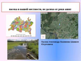 пасека в нашей местности, не далеко от реки ашит Пасека пчеловода Хакимова Ш