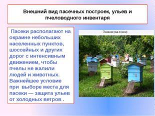 Внешний вид пасечных построек, ульев и пчеловодного инвентаря Пасеки располаг