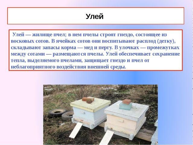 Улей Улей — жилище пчел; в нем пчелы строят гнездо, состоящее из восковых сот...