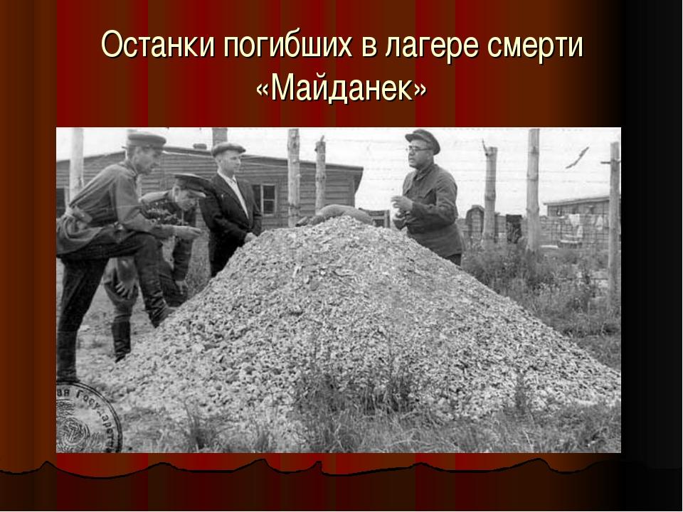 Останки погибших в лагере смерти «Майданек»