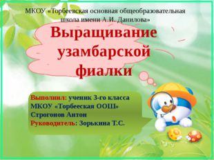 МКОУ «Торбеевская основная общеобразовательная школа имени А.И. Данилова» Выр
