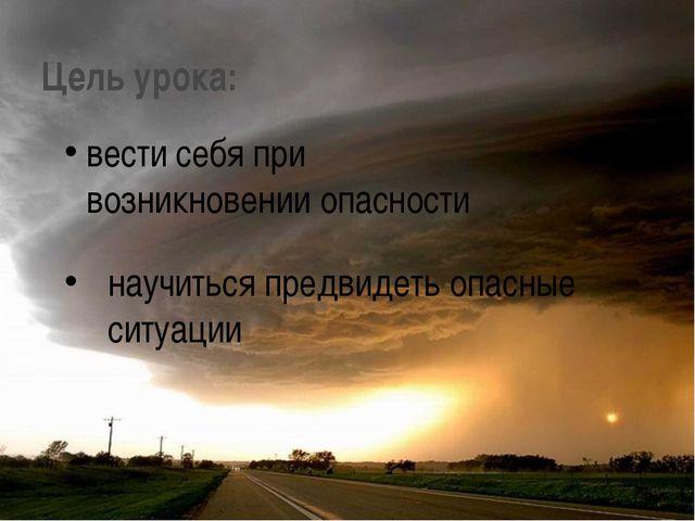 Цель урока: научиться предвидеть опасные ситуации вести себя при возникновени...