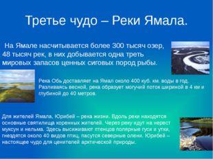 Третье чудо – Реки Ямала. На Ямале насчитывается более 300 тысяч озер, 48 тыс