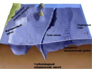 Материковая отмель (шельф) Материковый склон Ложе океана Глубоководный океани