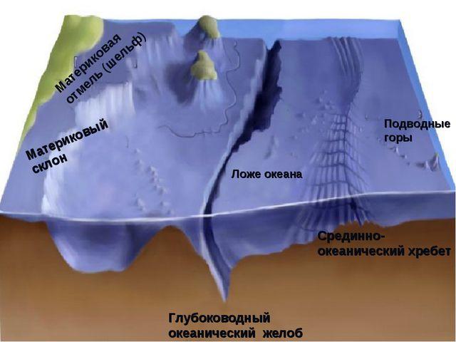 Материковая отмель (шельф) Материковый склон Ложе океана Глубоководный океани...