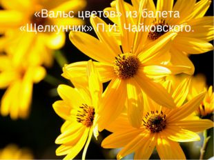 «Вальс цветов» из балета «Щелкунчик» П.И. Чайковского.