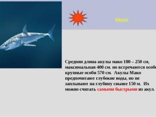 Мако Средняя длина акулы мако 180 – 250 см, максимальная 400 см. но встречают